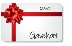 Gift Certificate 250